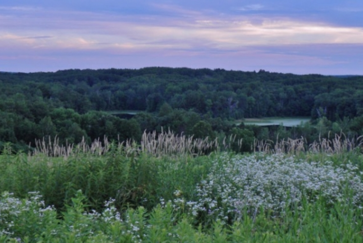 Chippewa Moraine Ice Age State Recreation Area Evening