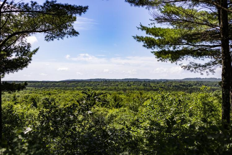 Tower Ridge County Park