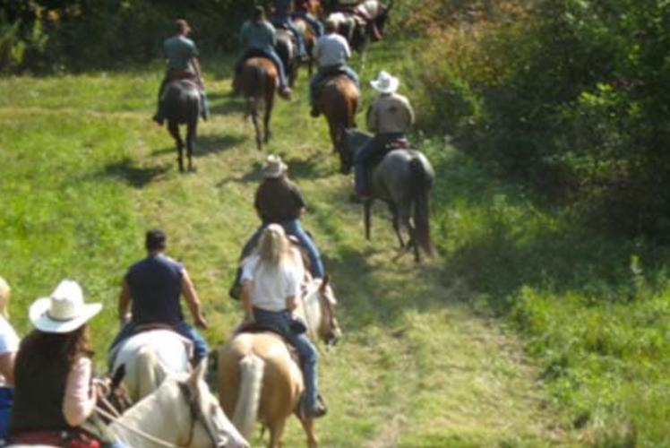 Triple HHH Equestrian In Hillsdale, Wisconsin