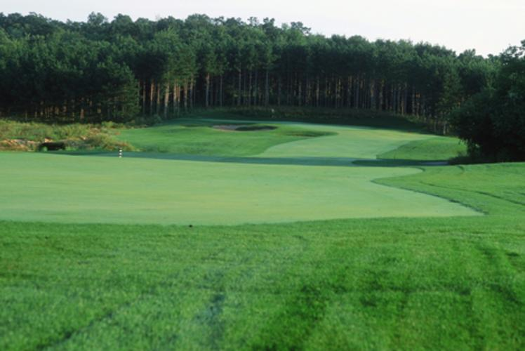 Wild Ridge Golf Course & Event Center Course