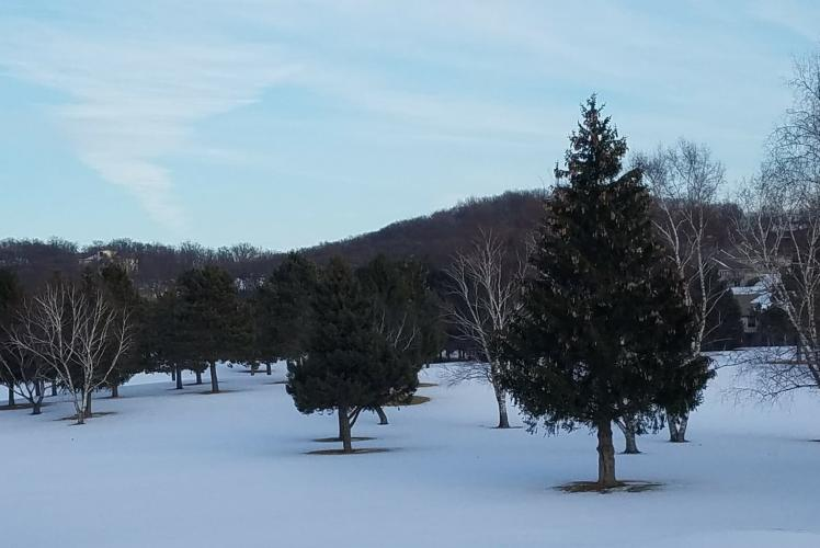 Princeton Valley Golf Course - Winter View