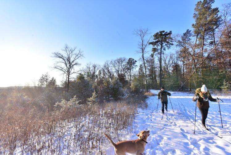 Tower Ridge County Park Skiing