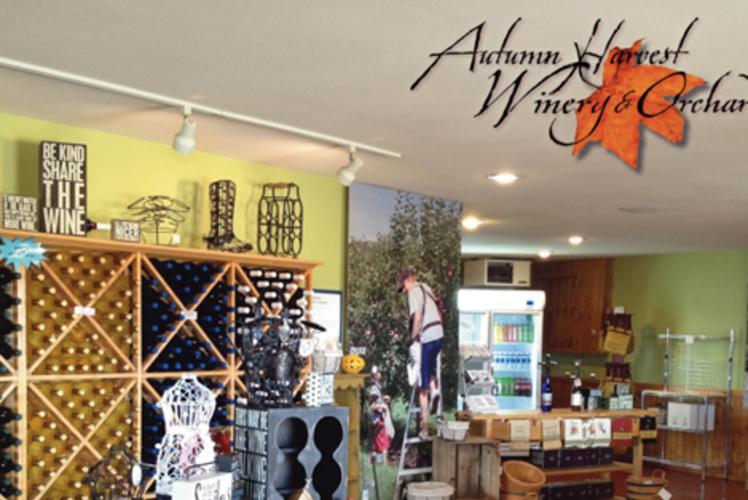 Autumn Harvest Winery - Interior