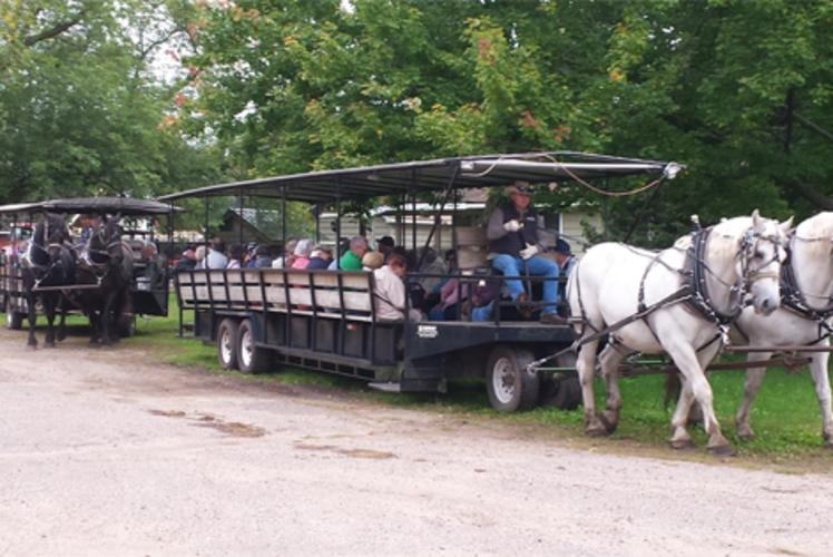Cabine Ridge Rides - Horse Drawn Wagons