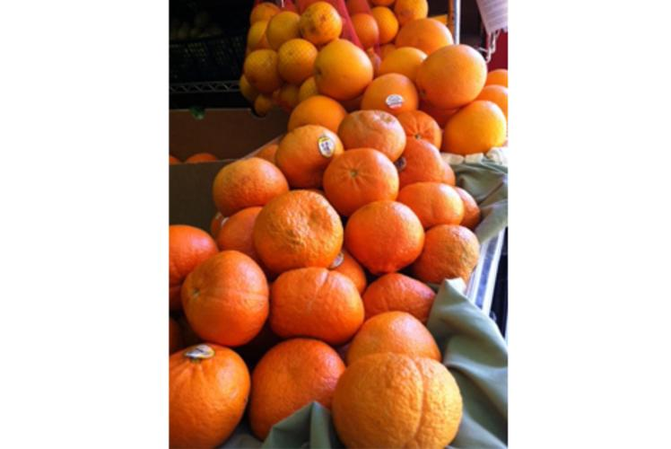 Just Local Food Co-op Oranges in Eau Claire, Wi