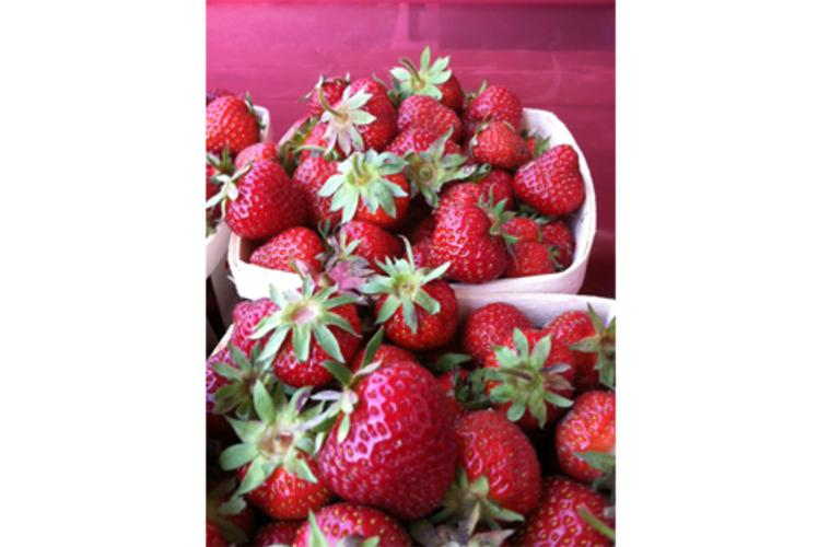 Just Local Food Co-op Strawberries in Eau Claire, Wi
