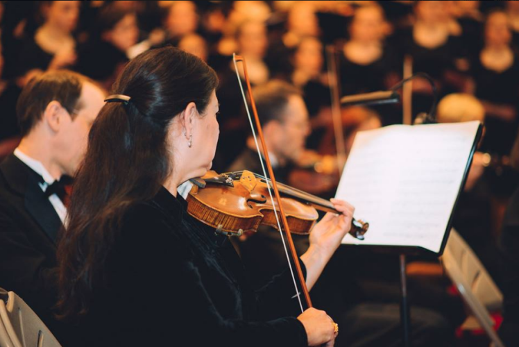 Eau Claire Chamber Orchestra Violinist