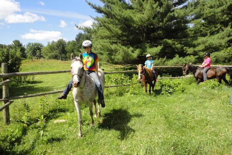 Wildernes Pursuit Horseback Ride