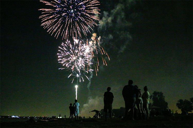 Firework Spectators