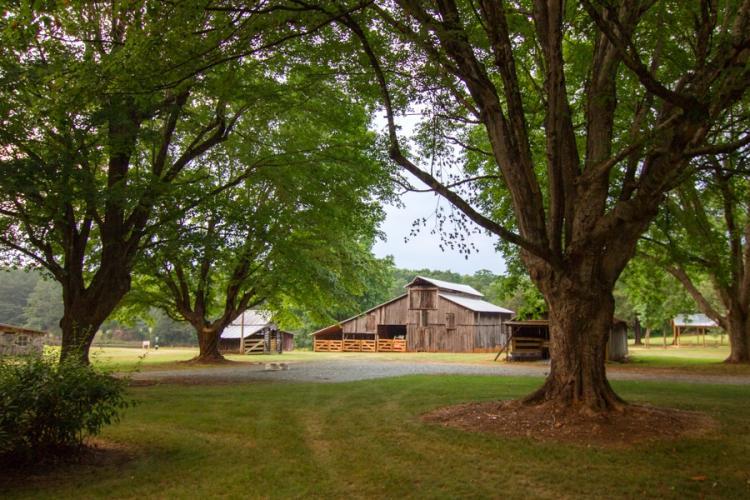 Blackwood Farm Park, Old Barn