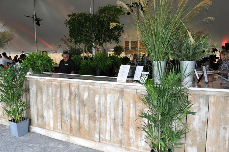 The bar surrounded by plants