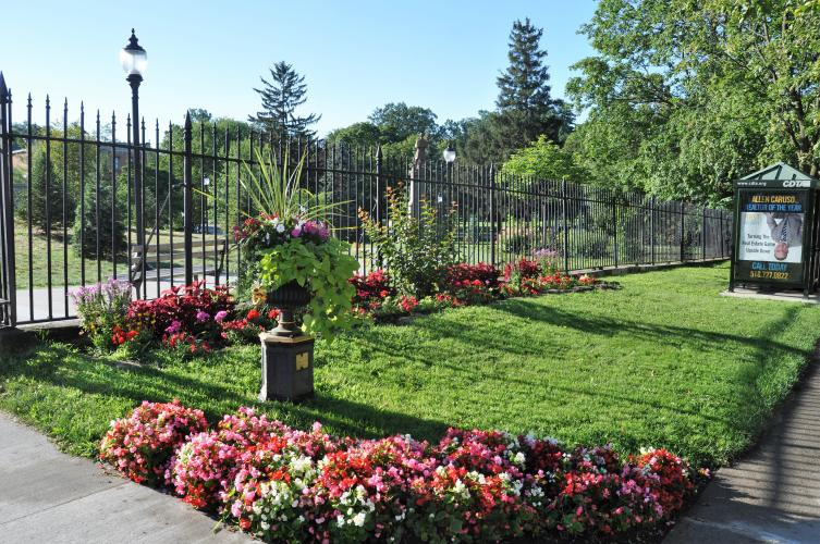 Flowers at Congress Park gate
