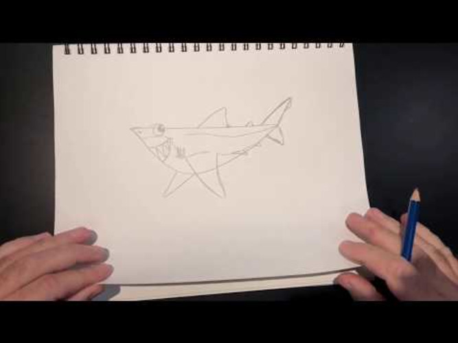 SEA-SPAN Episode 6: Shark Drawing Lesson with Matt
