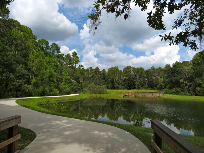 10 Miles of Trail to explore Oldsmar - your final destination is up to you!