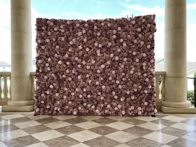 Blush Rose Flower Backdrop
