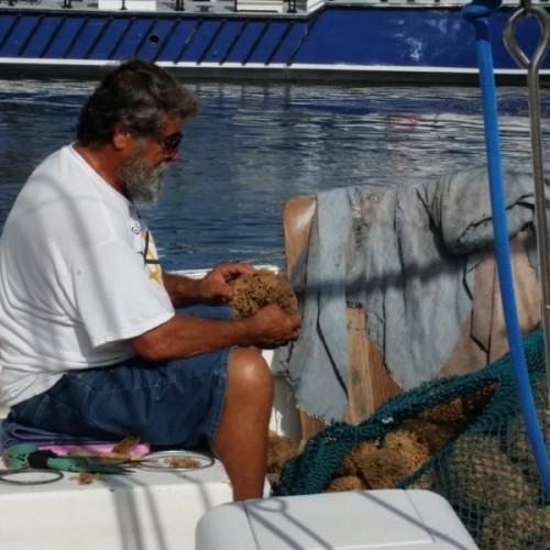 Spongers sorting their sponge catch.