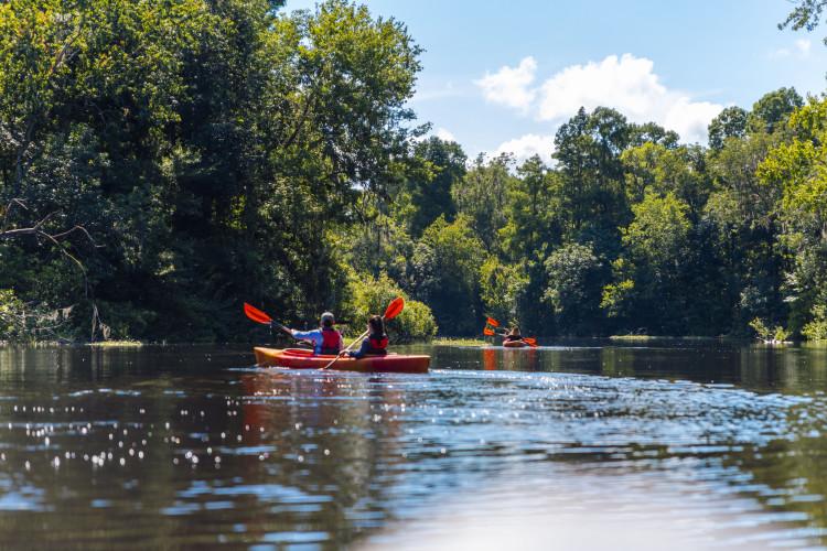 Canoe Escape Tampa Bay