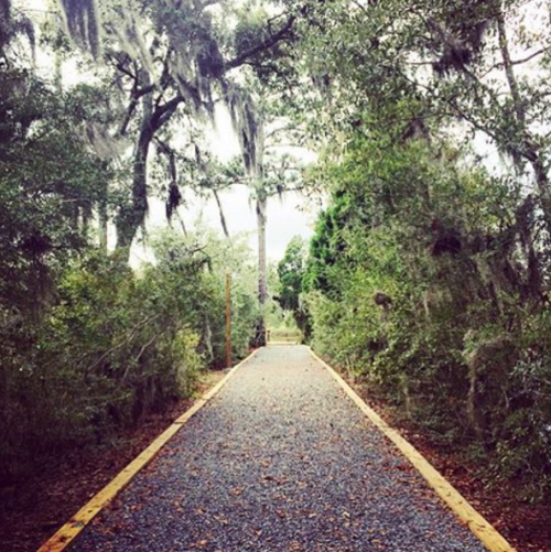 Gravel path at the Pascagoula River Audubon Center