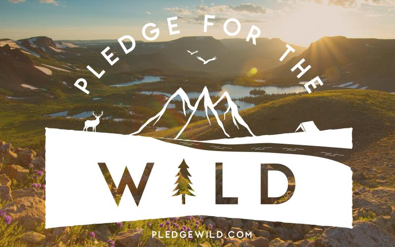 Pledge for the Wild, Steamboat Springs, Colorado