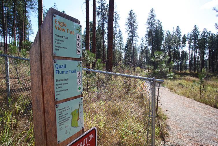 Eagle View & Quail Flume Trail