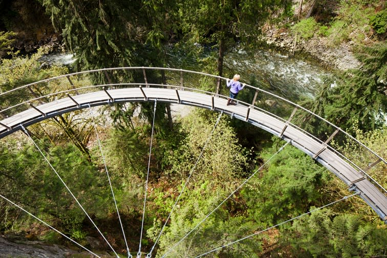 Surrounded by nature (courtesy Capilano Suspension Bridge Park).