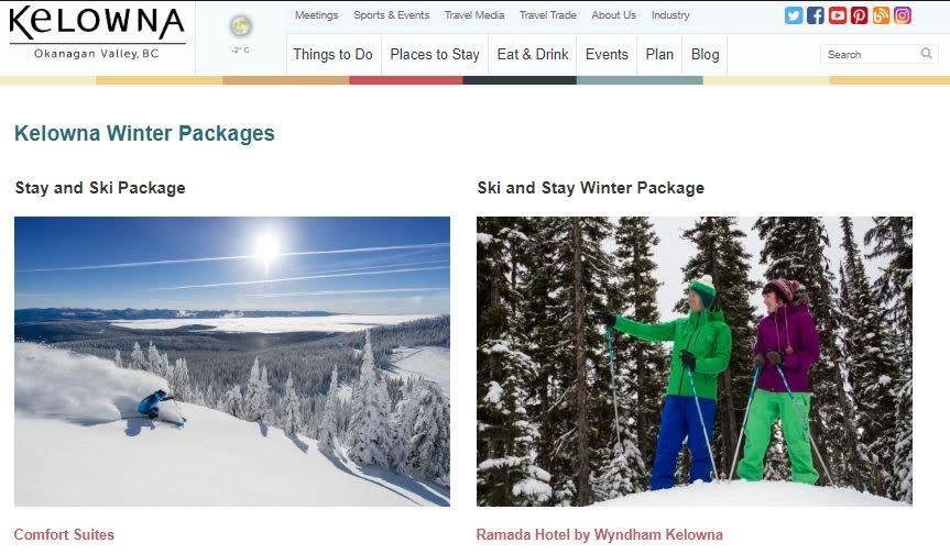 Photo of winter website