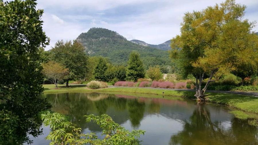 Morse Park Pond Show