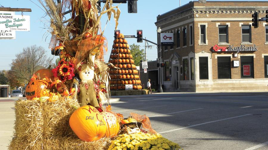 pumpkin-tree-wakarusa