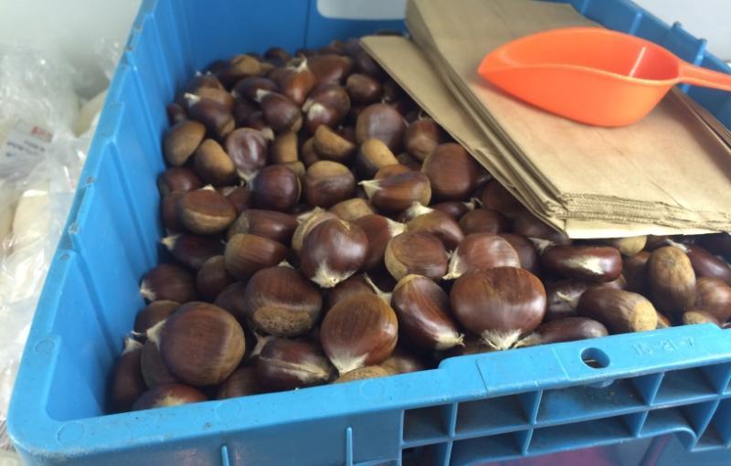 Roma Bakery Chestnuts