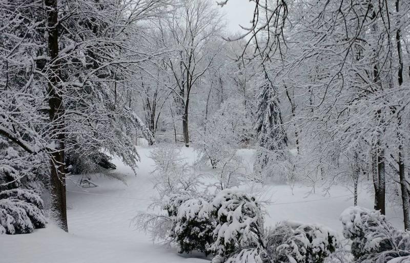 david-lee-manchester-snow-senic