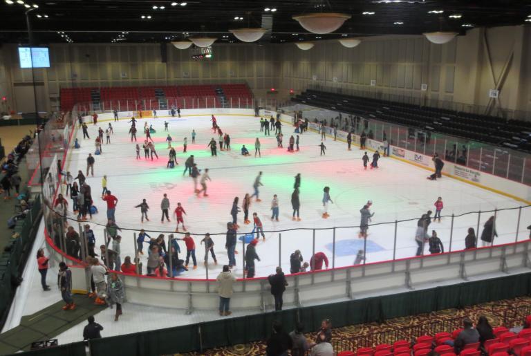 Ice Skating Arena