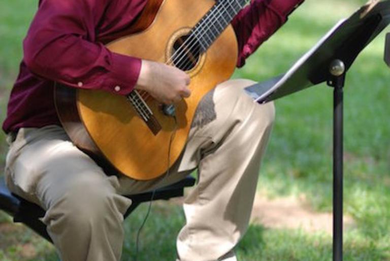 Pro Classical Guitarist