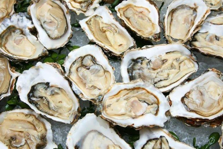 Oyster Tuesday at George's