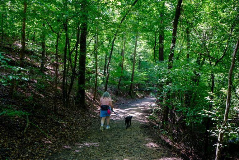 Ben Burton Park Trail