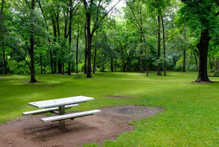 Dudley Park Field