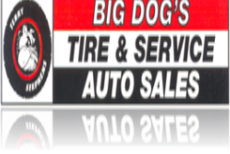 Big Dog Tire Logo