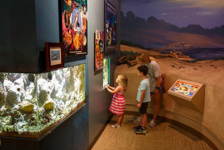 Sandy Creek Nature Center Family Exhibit