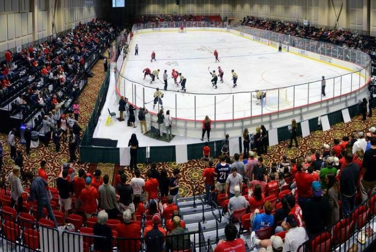 UGA Ice Dogs Panorama
