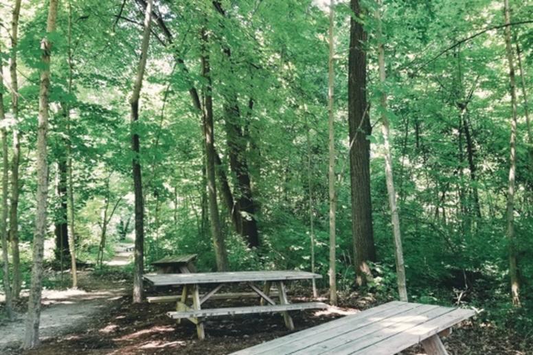 Cheeney Creek Image 2