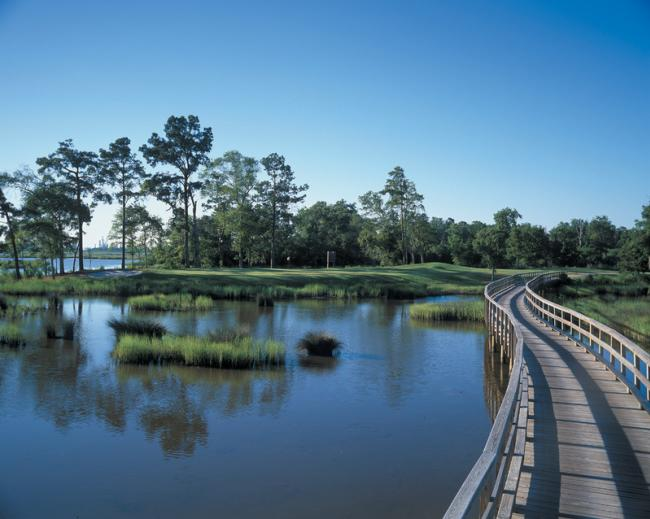 Gray Plantation's Signature Hole
