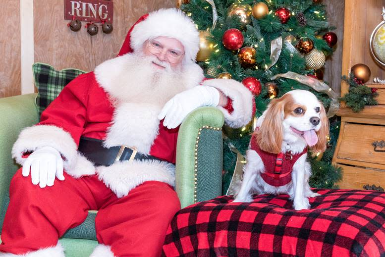 Get your pets a photo with Santa Claus at Irvine Spectrum Center and Fashion Island