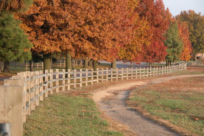 Cedar Crest - Trails