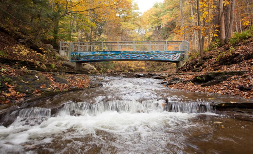 grimes-glen-fall-naples-bridge-watrer-falls-david-brown