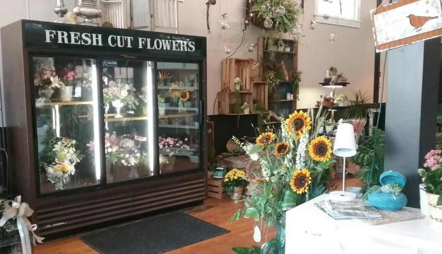 blooms on boswell flower shop