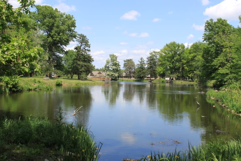 Copy of Gage Park Pond
