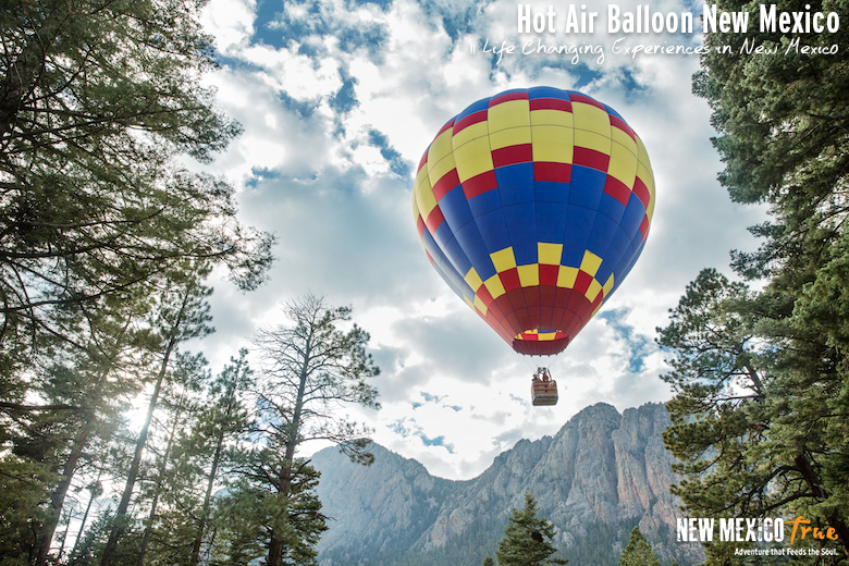 Hot Air Balloon in New Mexico