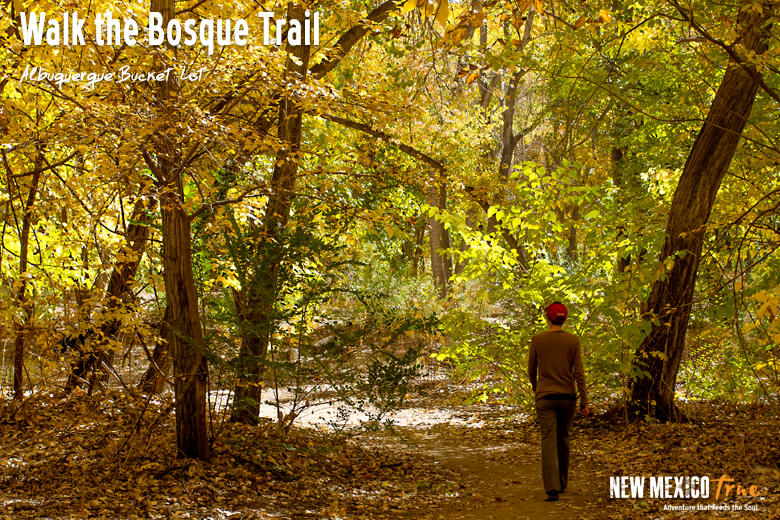 Walk the Bosque Trail