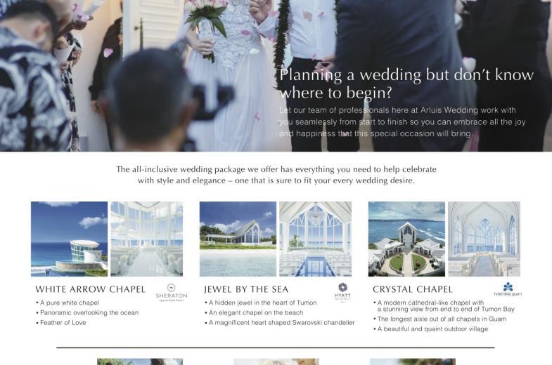 Arluis Wedding Flyer