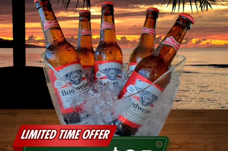 Budweiser Bucket Special