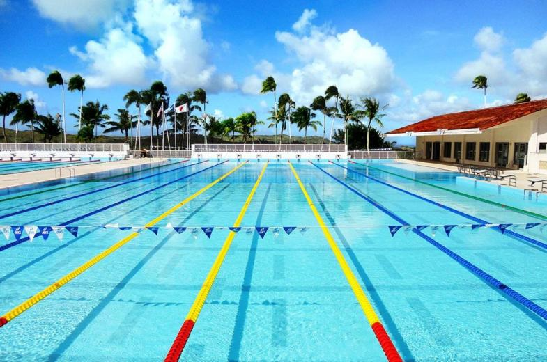 Competition Swimming Diving Pool